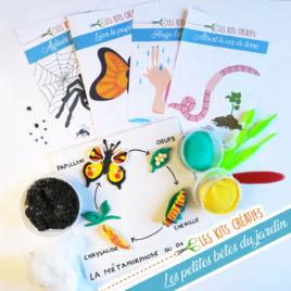 bricolage activite enfant cycle papillon