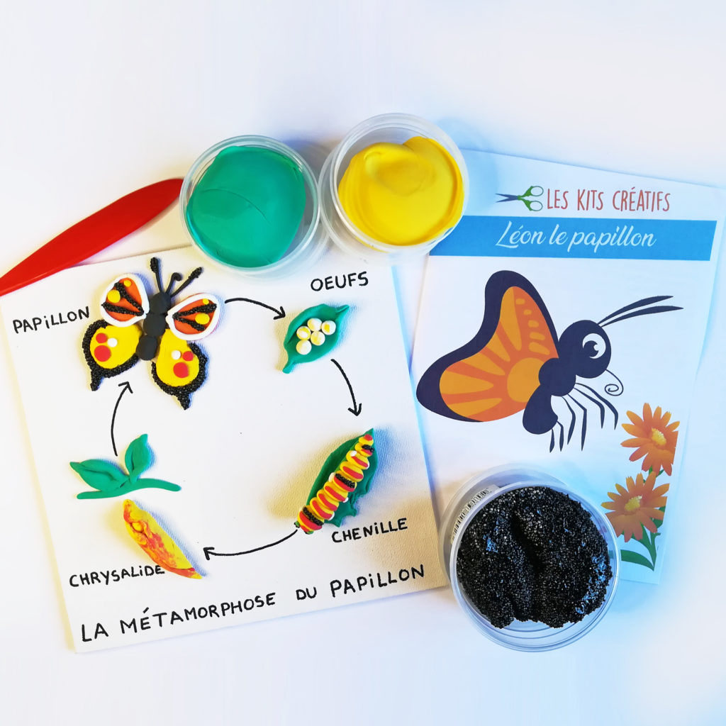 bricolage enfant fabriquer cycle metamorphose papillon