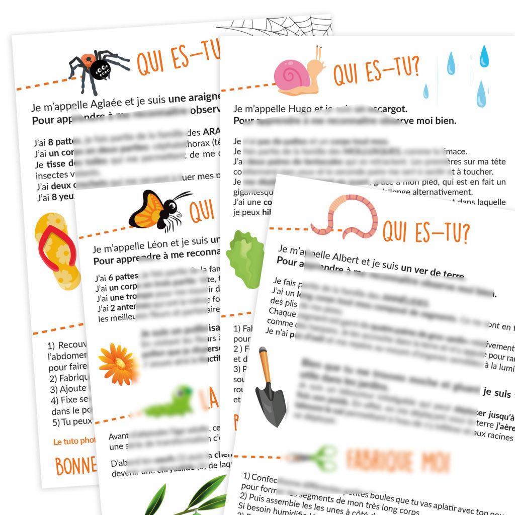 fiche pedagogique pdf insecte araignee papillon chenille vers terre escargot petite bete maternelle primaire cycle 1 2