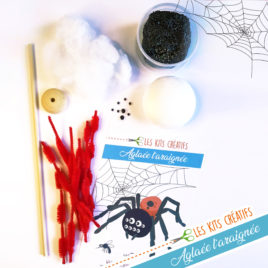 kit creatif halloween modelage araignée