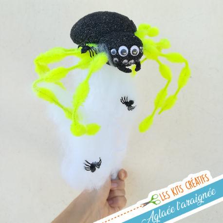 kit loisir creatif enfant activite manuelle inscete araignee
