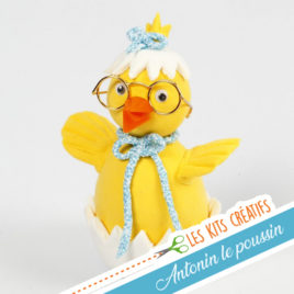 kit creatif enfant modelage animaux poussin kawaii
