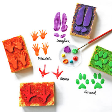 """DIY Fabriquer des tampons éponge """"Empreintes des animaux de la forêt"""""""